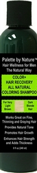 For Men Color + Hair Recovery All Natural Coloring Shampoo for Very Light Brown and Dark Blonde Hair